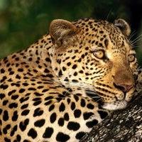 Photo taken at Gramado Zoo by Daniel C. on 7/22/2012
