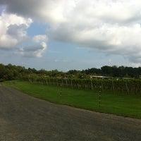 Photo taken at Three Fox Vineyards by Arianna on 9/6/2012