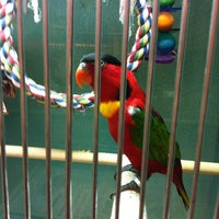 Photo taken at Super Pets by Jane A. on 7/7/2012