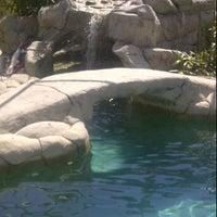 Photo taken at Backyard Oasis by Alana D. on 3/14/2012