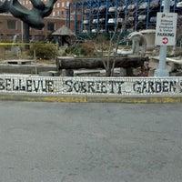 Photo taken at Bellevue Sobriety Garden by Ken C. on 2/8/2012