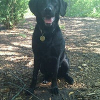 Photo taken at Warnimont Dog Park by Katie V. on 7/14/2012