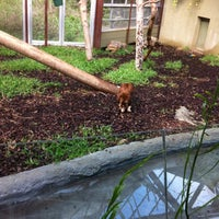 Photo taken at Australasia Pavillion by Cat B. on 4/17/2012