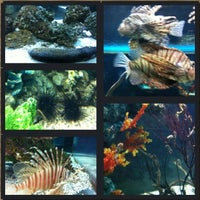 Photo taken at Institute of Marine Science by Pui on 3/23/2012