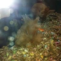 Photo taken at Super Pets by Elizabeth H. on 6/10/2012