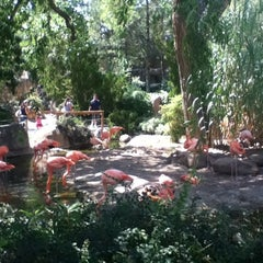 Photo taken at ABQ BioPark Zoo by Dani M. on 8/25/2012