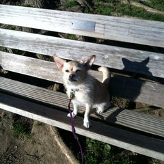Photo taken at Lincoln Statue Dog Park by Rebecca D. on 4/5/2012