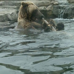 Photo taken at Minnesota Zoo by Angela M. on 4/10/2011