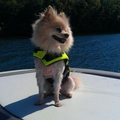 Photo taken at On The Boat At Belews Lake by Joya on 10/7/2011