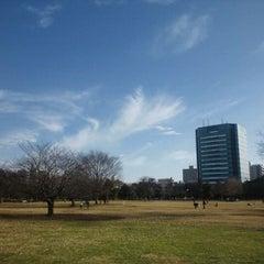 Photo taken at 木場公園 by Shin S. on 1/1/2011