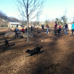 Photo taken at Piedmont Park Dog Park by Bill G. on 12/31/2011