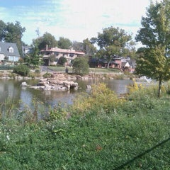 Photo taken at Swan Lake by Shannon B. on 10/17/2011