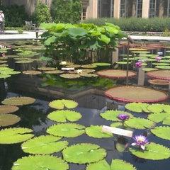 Photo taken at Longwood Gardens by Julia P. on 6/15/2012