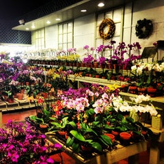 Photo taken at SF Flower Mart by Jason C. on 6/8/2013