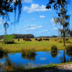 Photo taken at General James A. Van Fleet State Trail by Ross on 11/30/2014