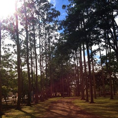 Photo taken at Parque Metropolitano La Sabana by Ann B. on 6/15/2013
