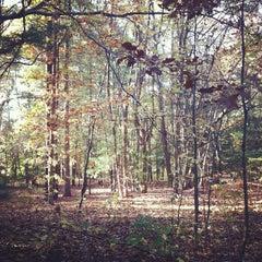 Photo taken at Washington Lake Park by Nicho A. on 10/24/2012