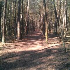 Photo taken at Rezerwat przyrody Żurawiniec by Łukasz P. on 4/14/2013