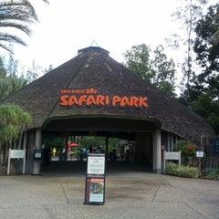 Photo taken at San Diego Zoo Safari Park by Sean P. on 2/8/2013