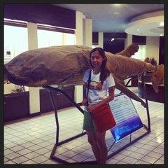 Photo taken at พิพิธภัณฑ์สัตว์น้ำราชมงคลตรัง by Au S. on 4/9/2014