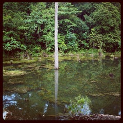Photo taken at Fishing Lake at Community Forest by Muhi C. on 10/27/2012