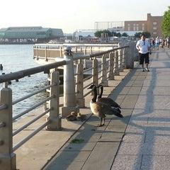 Photo taken at Hudson River Park by liza h. on 5/20/2013