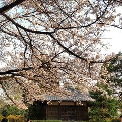 Photo taken at 哲学堂公園 by Spada B. on 3/23/2013