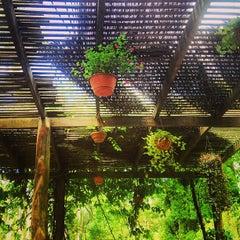Photo taken at Jardim Botânico de São Paulo by Samuel B. on 1/20/2013