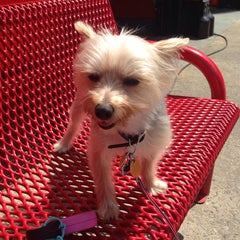 Photo taken at Coco & Toto by Kirsten J. on 5/20/2014