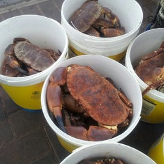 Photo taken at Local Shellfish by Kwun Tsun C. on 6/10/2013