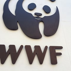 Photo taken at World Wildlife Fund by David G. on 4/10/2014