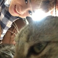 Photo taken at บ้านสี่ขารักษาสัตว์ by Grace A. on 7/18/2015