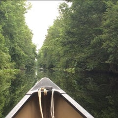 Photo taken at South End Dismal Swamp Canal Trail by Ken D. on 5/30/2014