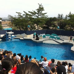 Photo taken at New York Aquarium by Susumu on 7/27/2013