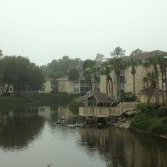 Photo taken at Sheraton Vistana Resort Villas, Lake Buena Vista/Orlando by Pedro A. on 12/8/2012