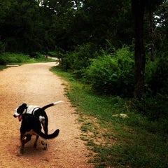 Photo taken at Shoal Creek Dog Park by Caitlyn B. on 6/13/2013