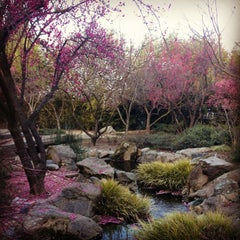 Photo taken at Shinzen Japanese Garden by Reena A. on 1/28/2013