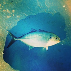 Photo taken at Avon Fishing Pier by Daniel S. on 8/23/2014