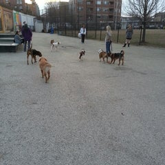Photo taken at Churchill Field Dog Park by Alan G. on 4/5/2013