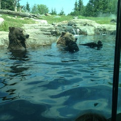Photo taken at Minnesota Zoo by Todd B. on 7/20/2013