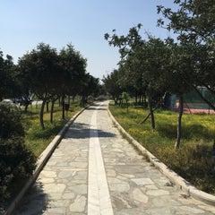 Photo taken at Πάρκο Αλίμου by Lambros G. on 4/26/2015