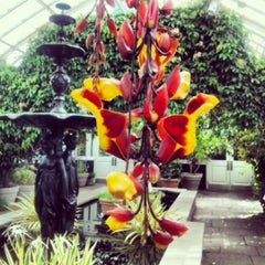 Photo taken at New York Botanical Garden by Linnea C. on 6/19/2013