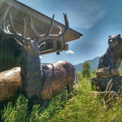 Photo taken at Jackson Visitor Center by Capt R. on 7/13/2015