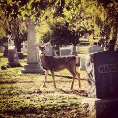 Photo taken at Mount Olivet Cemetery by Nanci M. on 10/11/2012