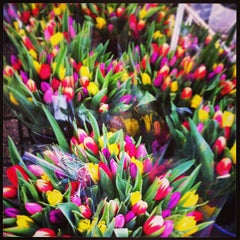 Photo taken at Bloemenmarkt by Yuliana on 2/17/2013