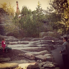 Photo taken at Calgary Zoo by @philippegbois on 10/1/2012