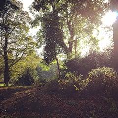 Photo taken at Roberts Park Playground by Jennifer M. on 10/5/2014