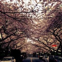 Photo taken at 남천해변 벽화거리 by 917 on 3/31/2013