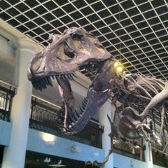 Photo taken at The Academy of Natural Sciences of Drexel University by CampusPhilly on 9/28/2012