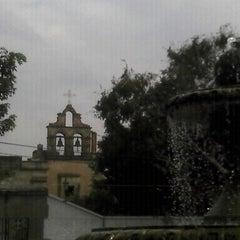 Photo taken at Jardín de San Miguel de Mezquitán by Galileo O. on 1/28/2013